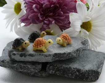 2 Micro Turtles Miniature Fairy Garden