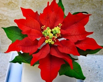 Gumpaste Poinsettia, Sugar Flower