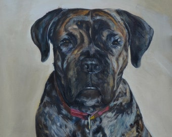 Dog Portrait, Oil Painting Your Pet from Your Photograph, Oil on Canvas
