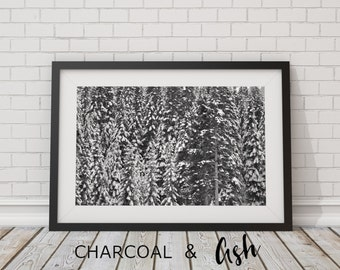 Snoqualmie Pass Forest, Winter Decor, Rustic Home Decor, Pacific Northwest, Mountains, Snow Scene, Black and White, // Frame NOT INCLUDED