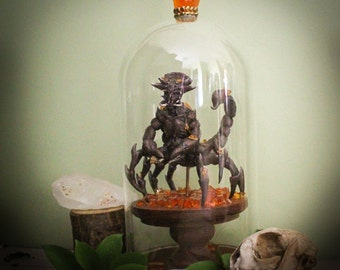 Ambered Scorpion Specimen- OOAK Sculpture