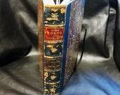 Rare Antiquarian Book Irish Poets and Novelists Crowley 1892