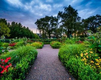 Gardens at Kungsträdgården, in Norrmalm, Stockholm, Sweden - Photography Fine Art Print or Wrapped Canvas