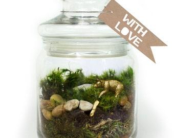 Moss Terrarium // Bear // Gold