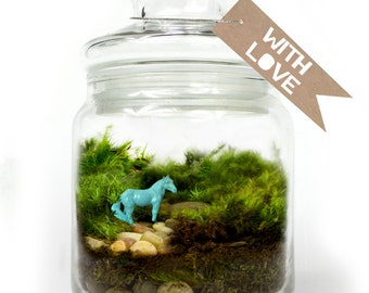 Moss Terrarium // Horse // Aqua