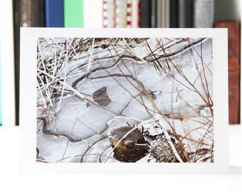 photographic cards,photo cards,photo greeting cards,christmas,winter,ice,handmade,xmas cards,thank you card,birthday card,blank,thanksgiving