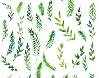 Ferns ~ 88608492a ~ Glass Decal - Ceramic Decal - Fusible Glass Decals - Waterslide Transfer