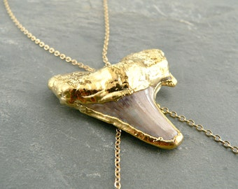 Real Shark Tooth Gold Body Chain