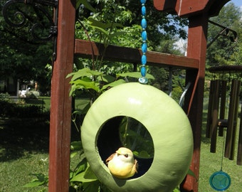 Fly-Through Gourd Birdfeeder
