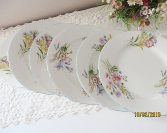 Shelley vintage 1950's set of tea plates,Wild Flowers pattern,Shelley wild flowers, English garden,Tea party plate, Wild flowers