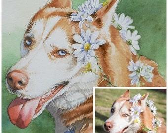 Custom Pet Portrait Watercolor Painting - 11x14 w/ full background