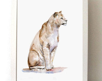 Lioness Watercolor Painting - Animal painting Giclee print - Lion Aquarelle - Zoo watercolour - illustration