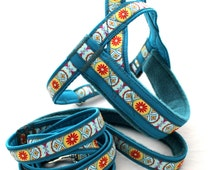Norway harness with leash for set, elegant pattern. For dog, sighthounds, pugs, bulldogs, Italian greyhound, maltipoo, poodle, whippe