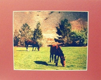 HORSE DECOR for small space, by Pam Ponsart of Pam's Fab Photos featuring wild Mustang Horses of Nevada