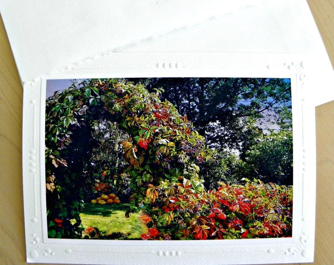 FALL HARVEST Greeting Card featuring Nature's Abundance created for you by Pam Ponsart of Pam's Fab Photos