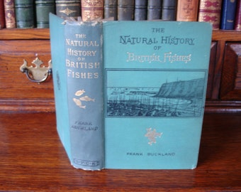 Natural History of BRITISH FISHES