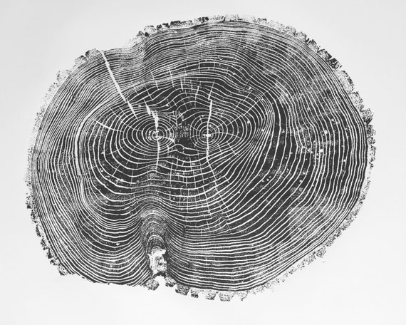 Oversized Wall Art, Tree Ring Art Print, Large Ash Tree, Original woodblockGift for him, Fathers day, for guys, Real Tree Stump, LintonArt