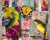 "Last Call Birds, Flowers and Butterflies - 1x2"" dominoes - Digital Collage Sheet (033) - instant download"