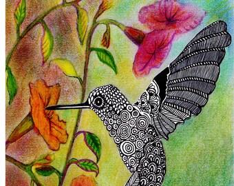 Bird Art Print, Bird Drawing, Hummingbird Art, Hummingbird Print, Animal Cards, Personalised Cards, Animal Lover Gift, Home Decor Wall Art