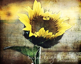 Rustic Sunflower Print