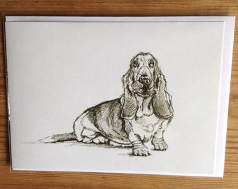 Bassett Hound Greetings Card