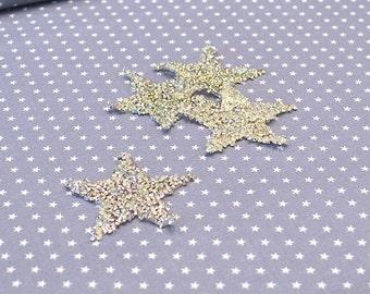Star rhinestone silver