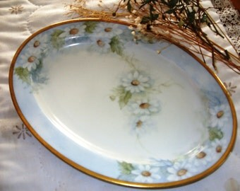Handpainted Bavarian Plate, Antique Paul Muller Selb Bavarian Platter, Hand Painted Made in Germany, Antique Display Plate