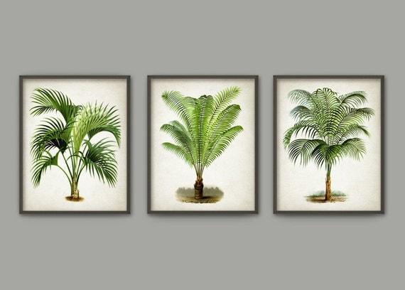 Palm Tree Wall Decor palm tree botanical wall art print set of 3 modern home