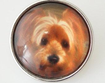 KB2508-n  Art Glass Print Chunk - Adorable Dog