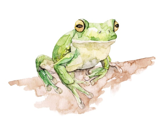 Tree Frog Painting Print From Original By Thecolorfulcatstudio
