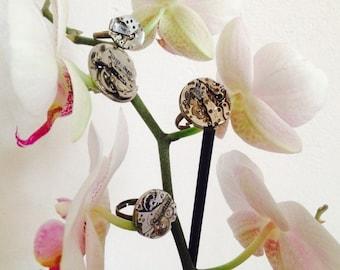 poetic ring