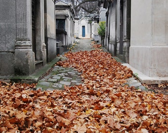 Paris Photography, Autumn in Paris, Pere Lachaise, Autumn Leaves, French Travel Photograph, Wall Decor