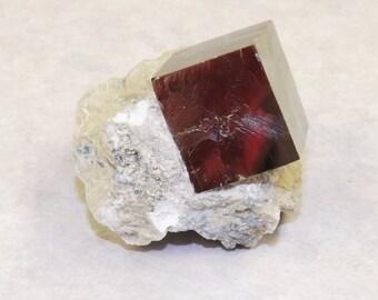 Iron Pyrite in Limestone Matrix - SALE