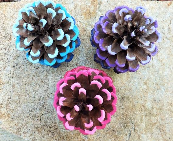 Ombre Pinecones: Set of 3