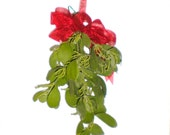 Real Mistletoe,Fresh Mistletoe bunch,Wild Texas Mistletoe fresh gathered, red ribbon,Organic Mistletoe,Real Mistletoe,Kissing ball