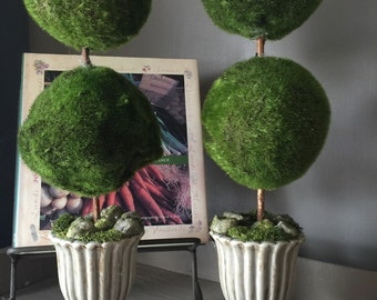 Double Moss Topiary