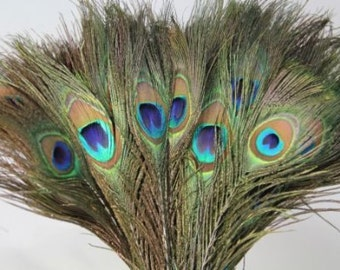 Natural Peacock Feathers 10-12 inches Long, 30 Count Pieces For Wedding Or Creating Home Decoration, Peacock Feathers With Eye Pattern
