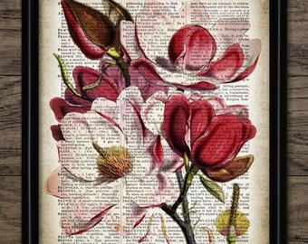 Vintage Flower Print - Flower Illustration - Flower Decor - Botanical - Printable Art - Single Print #1115 - INSTANT DOWNLOAD