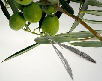 Silver earrings. Olive leaf.