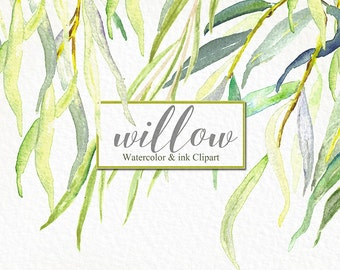 Willow  branches watercolor  and ink clipart hand drawn. Romantic wedding, yellow green, tender green branches, wedding invitation.