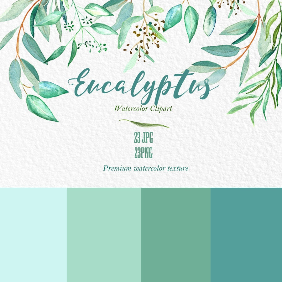 Wedding Tree Watercolor Clipart: Eucalyptus Branches Watercolor Clipart Hand By LABFcreations