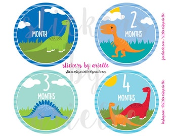 Month by Month Baby Boy Stickers - Dinosaurs