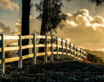 """Photo """"Disappearing Fence"""" Temecula Vineyards at Sunset, Winery Photo, Rustic or  Fine Art Wall Photograph  on Metal, Available in Canvas"""