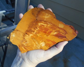 Butterscotch Jasper slab From a vintage collection #96