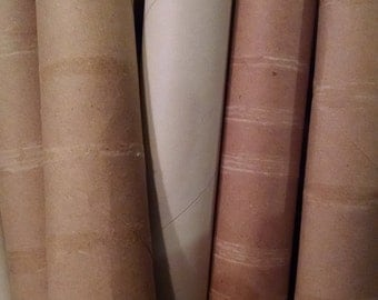 12 Empty Paper Towel Rolls, Paper Towel Tubes, Free Shipping