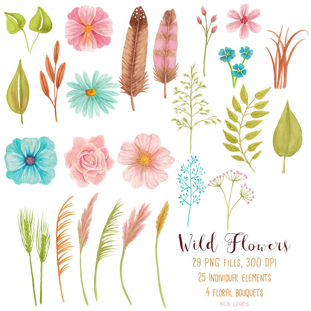 Wild Flower Watercolor Clipart Pink And Blue Meadow Flowers Graphics Wild Bouquet And Grasses