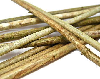 Dried Hazel sticks for flower decor, craft projects, rabbit food, corylus avellana, ornaments ,pet supplies,twigs and branch ,natural supply