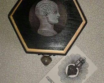 Wooden box decorated wooden box Head-Steampunk-Anatomy