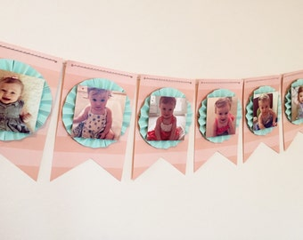 Twelve Month Photo Banner. First Year Photo Banner. Birthday Banner. Picture Banner. NB 12 Month Banner. First Birthday Banner