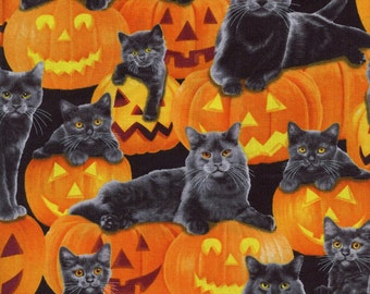 Timeless Treasure Halloween Pumpkin Cat C2561 Orange Cotton Fabric, By the Yard